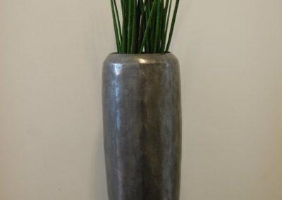 sanseveria-mikado-planterad-i-loft-21042
